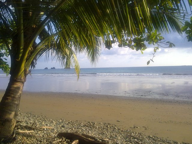 Playa Ballena in Southern zone of Costa Rica