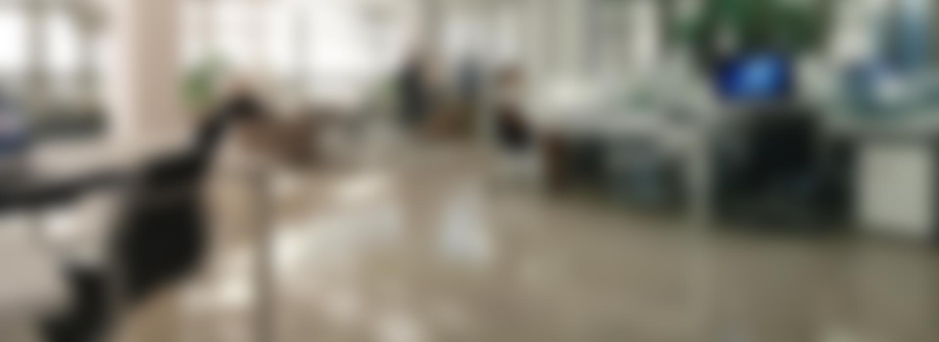 content-bg4-blur